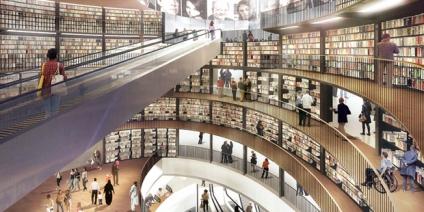 biblioteka_birnimgen_satelit