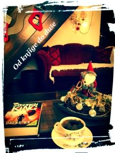 od-knjige-do-duse-novogodisnja-2