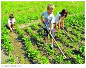 radu u polju
