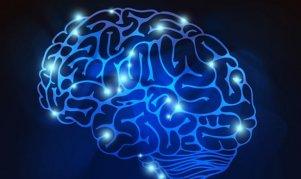 bright-brain_23-2147514542