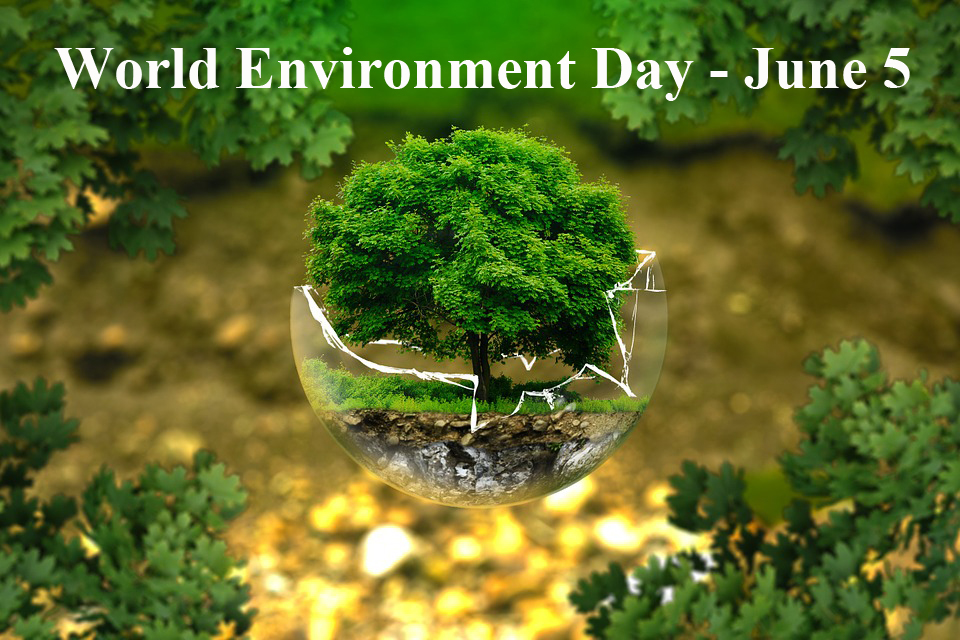 world-environment-daye280ac