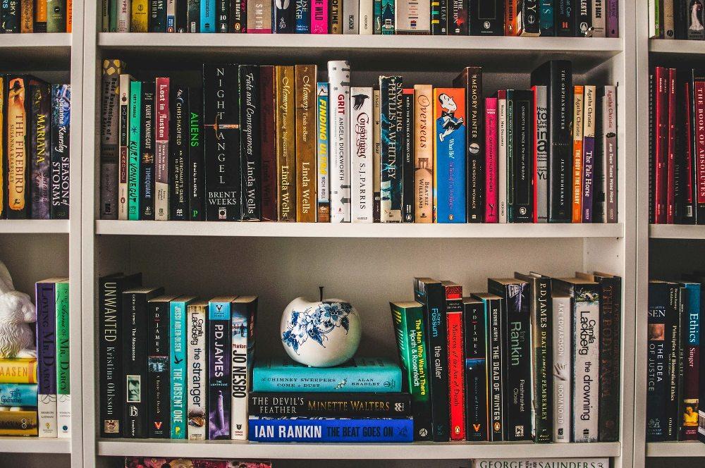 knjige-na-polici (1)